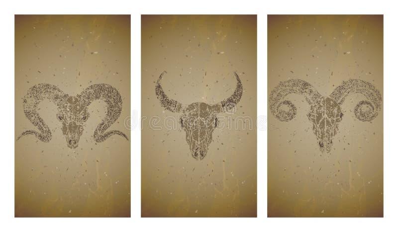 Wektorowy ustawiający trzy ilustracji z grunge sylwetek czaszkami dziki bizon, byk i baran na starym tekstury tle, Rocznik ilustracji