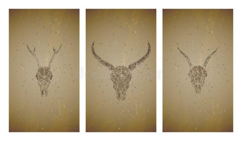 Wektorowy ustawiający trzy ilustracji z grunge sylwetek czaszkami dziki bizon, kózka i roe rogacze na starym tekstury tle, ilustracja wektor