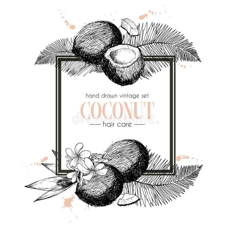 Wektorowy ustawiający włosianej opieki składniki Organicznie ręka rysujący elementy Kwadratowy rabatowy skład royalty ilustracja