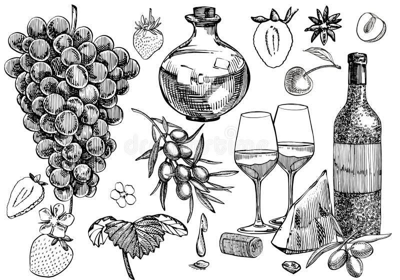Wektorowy ustawiający winogradów produkty ilustracja w nakreślenie stylu projekt rysująca elementów ręka pojedynczy białe tło ilustracja wektor