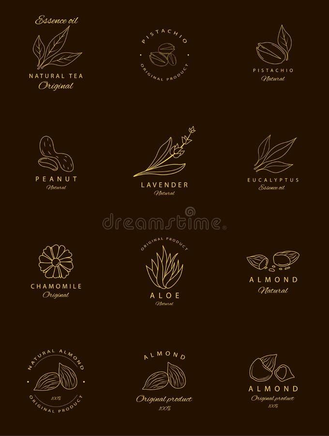 Wektorowy ustawiający złoci pakuje projektów szablony, emblematy i Argan, aloes, arachid, migdał, eukaliptus, herbata, chamomile  ilustracji
