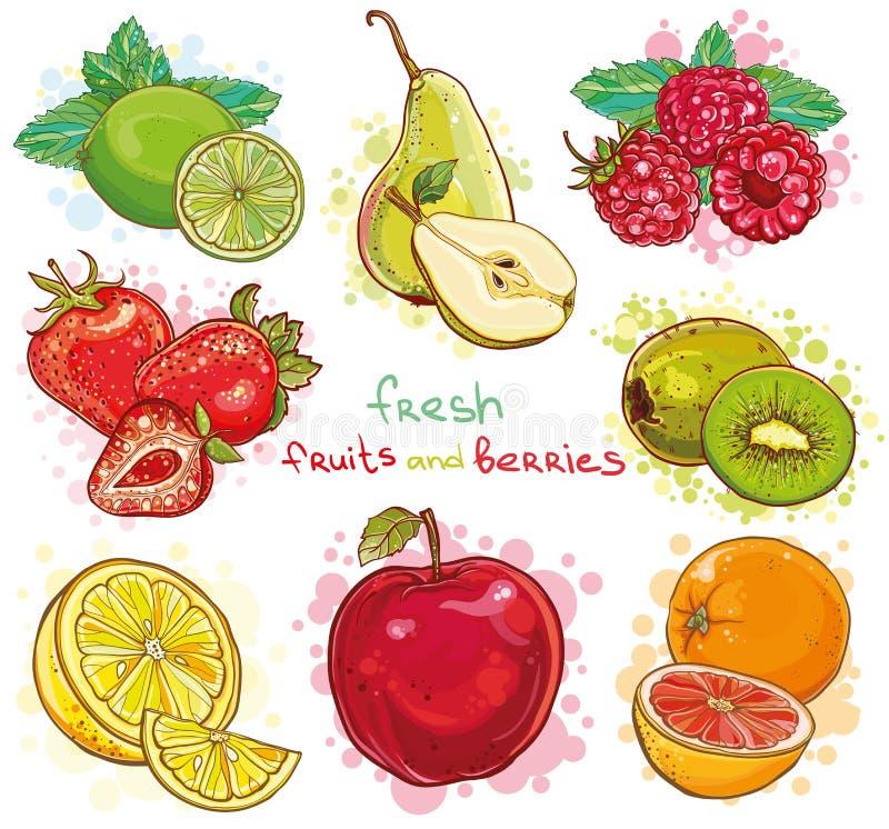 Wektorowy ustawiający z świeżymi owoc i jagodami ilustracja wektor