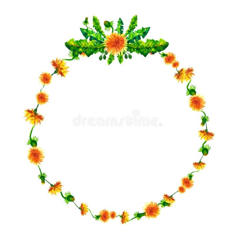 Wektorowy wianek, okrąg rama z akwarelą kwitnie, dandelion fuzzies, ręka rysująca dla poślubiać projekt, kartka z pozdrowieniami ilustracji