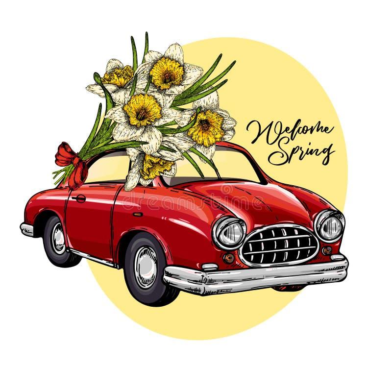 Wektorowy Wielkanocny samochód Retro samochód jedzie bukiet daffodils Ręka rysująca wektorowa ilustracja Graweruję barwił sztukę ilustracja wektor