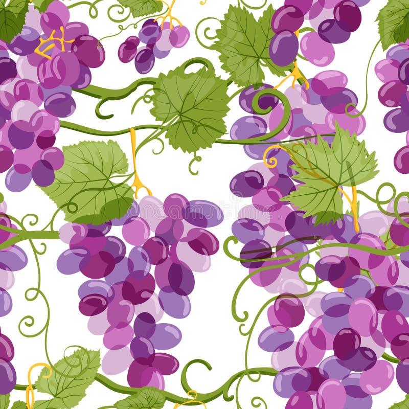 Wektorowy winogrono winogradu bezszwowy wzór Winnica ręka rysująca ilustracja Projektów elementy dla wina pakować lub etykietki ilustracja wektor