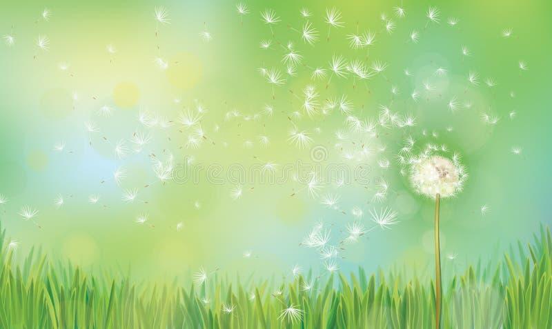 Wektorowy wiosny natury tło royalty ilustracja