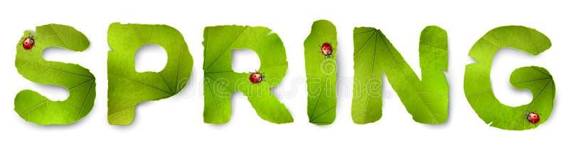 Wektorowy wiosny słowo, robić od zielonych liści royalty ilustracja