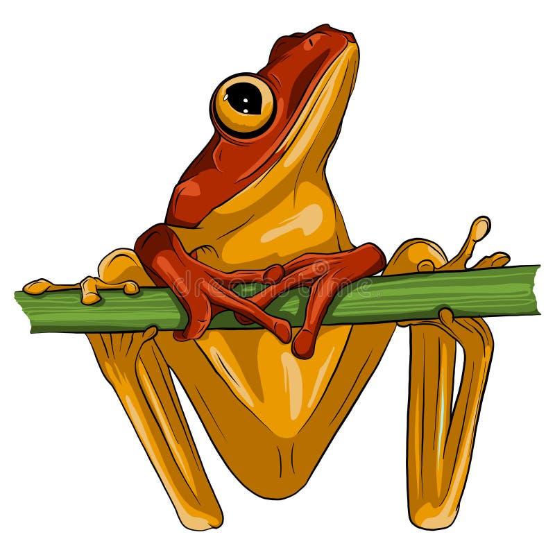 Wektorowy wizerunek żaba projekt na białym tle, ilustracja wektor