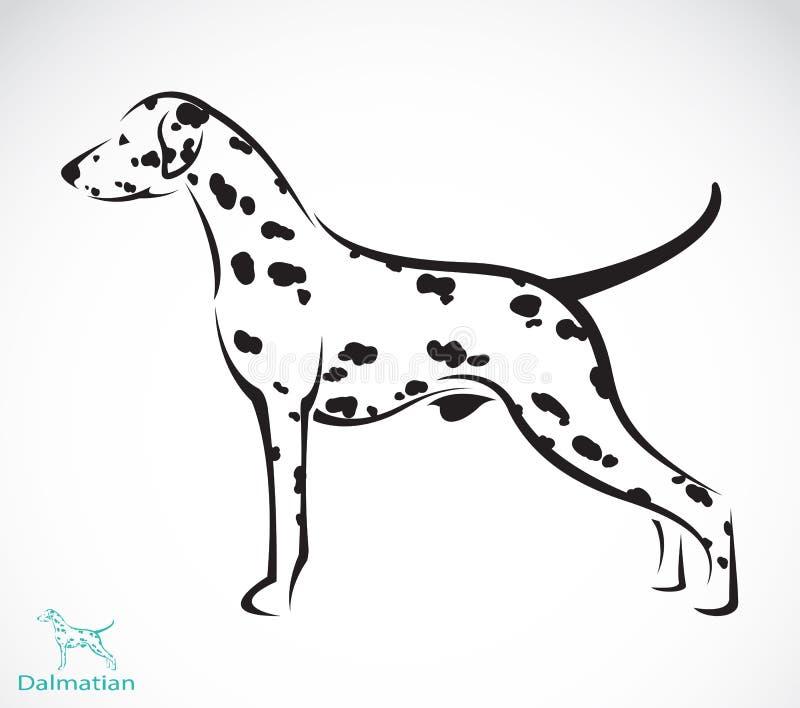 Wektorowy wizerunek dalmatian pies ilustracji