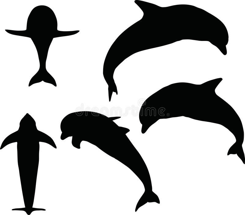 Wektorowy wizerunek - delfin sylwetka na białym tle royalty ilustracja