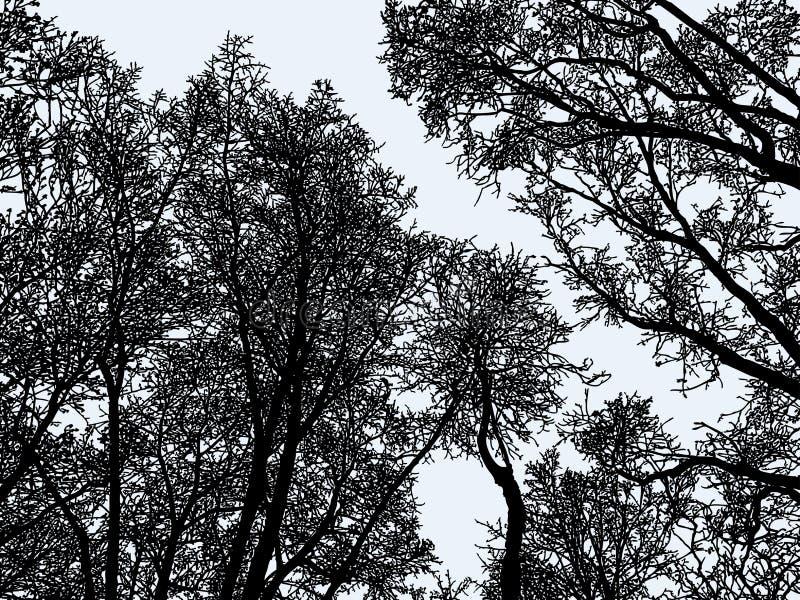 Wektorowy wizerunek drzewo sylwetki w zima lesie obrazy stock