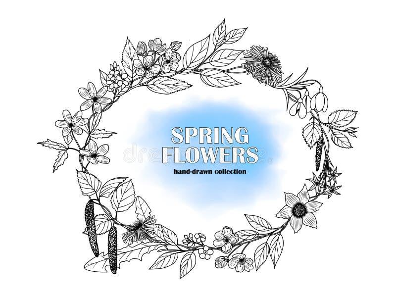 Wektorowy wizerunek rama pociągany ręcznie wiosna kwitnie ilustracji