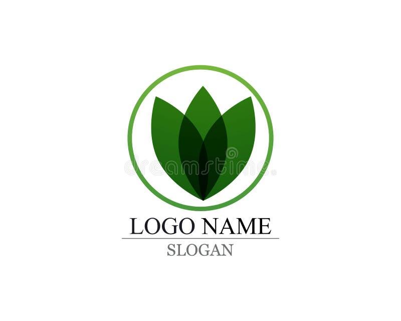 Wektorowych liści natury zielony logo i symbol zdjęcie stock