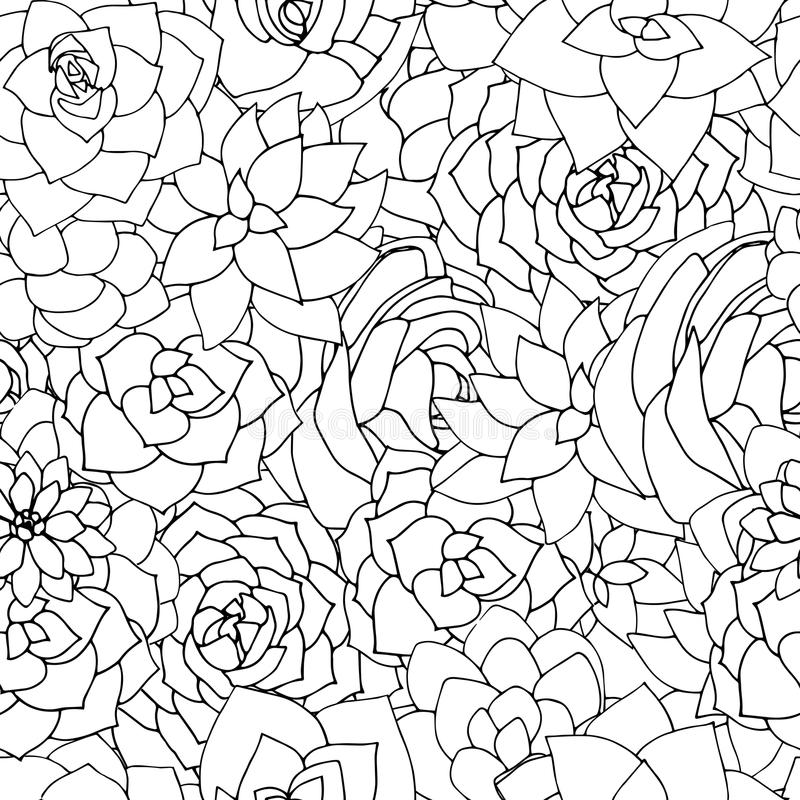 Wektorowych sukulentów bezszwowy wzór Tłustoszowaty czarny i biały lub ilustracja wektor