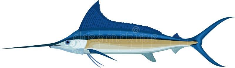 Wektorowych swordfish Atlantycki błękitny marlin royalty ilustracja