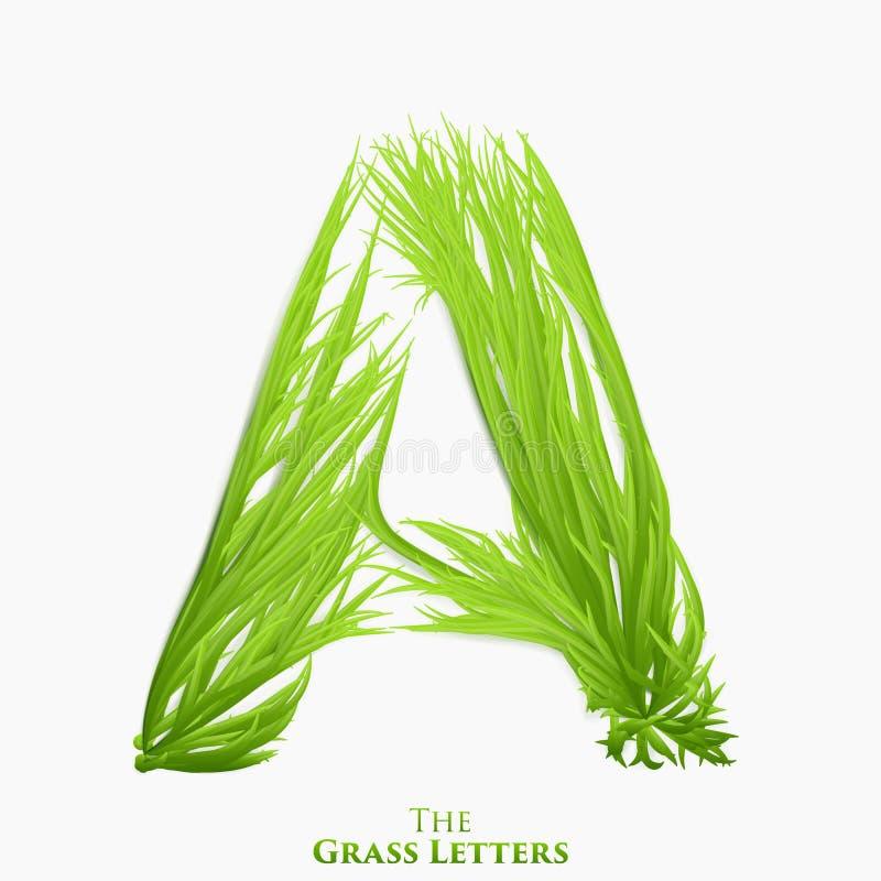 Wektoru list A soczysty trawy abecadło Zielenieje A symbolu składać się z narastająca trawa Realistyczny abecadło organicznie ilustracja wektor