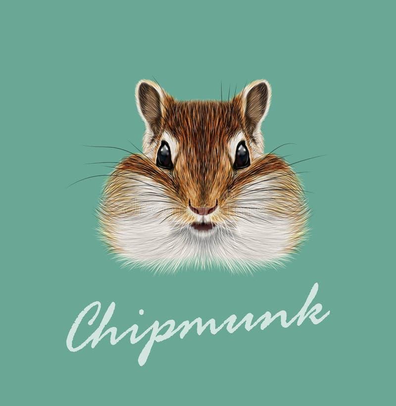 Wektoru Obrazkowy portret Chipmunk royalty ilustracja