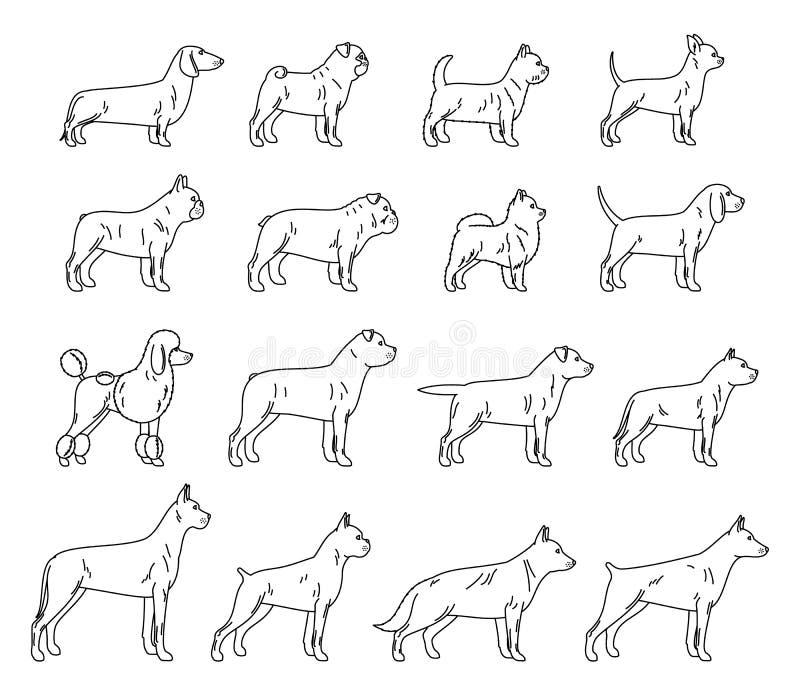 Wektoru psa ikon cienka kreskowa kolekcja odizolowywająca na bielu ilustracji