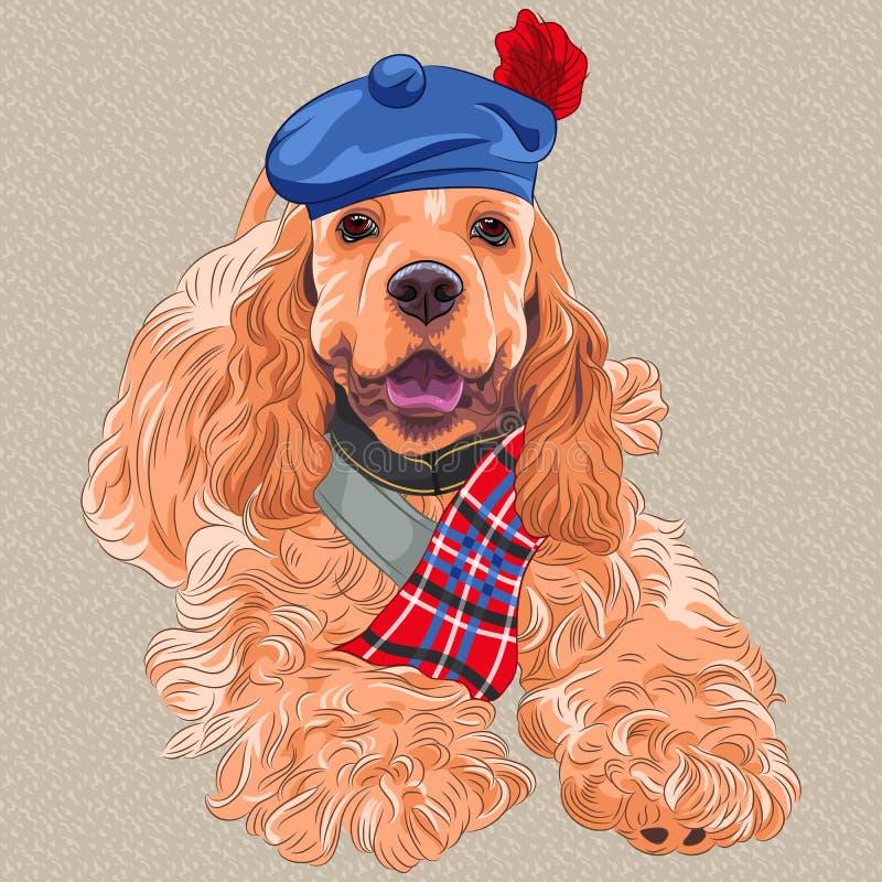 Wektoru psi amerykanin Cocker Spaniel w Szkockim Ta royalty ilustracja