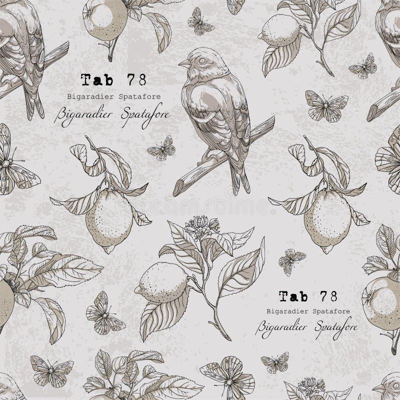 Wektoru wzór z ptakiem, cytryna rozgałęzia się, jabłko, liście, motyl ilustracji