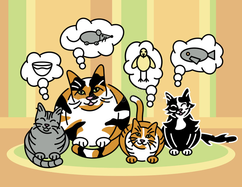 Welche Katzen ungefähr denken lizenzfreie abbildung
