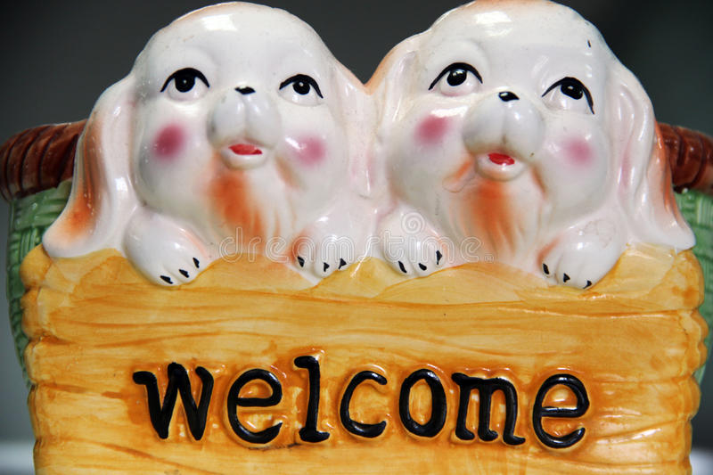 Welcome and cute pigs royalty free stock image