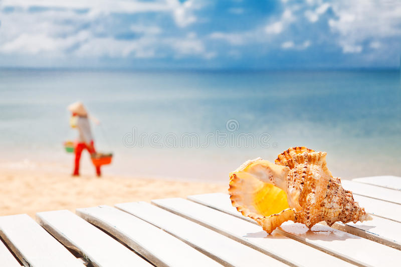 Welcome To Vietnam! Sea Shell On A Chaise Lounge Royalty Free Stock Images