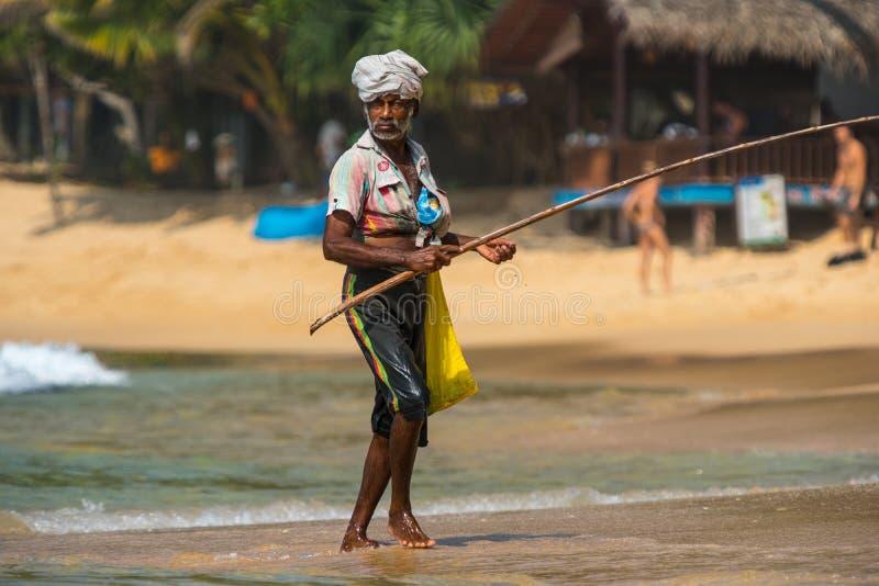 WELIGAMA SRI LANKA - JANUARI 18, 2017: Stående av den lokala fisken fotografering för bildbyråer