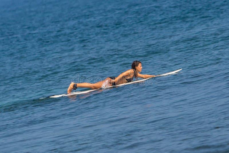 WELIGAMA, SRI LANKA - 6 JANVIER 2017 : Surfi non identifié de femme photographie stock libre de droits