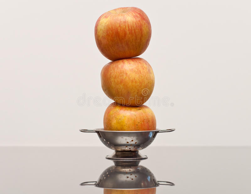 Download Well Balanced Diet stock photo. Image of fresh, healthy - 14774938