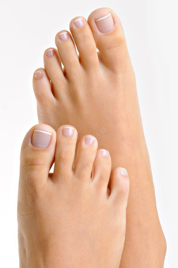 Well-groomed Female Feet Royalty Free Stock Image
