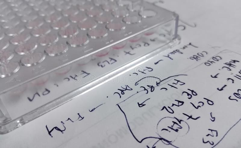 96-well plat, matériel en plastique de laboratoire, sur une feuille de papier avec des notes de recherches photographie stock