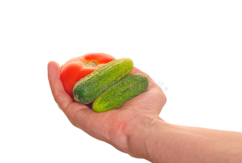 Well shaped hand with fresh vegetables royalty free stock photography