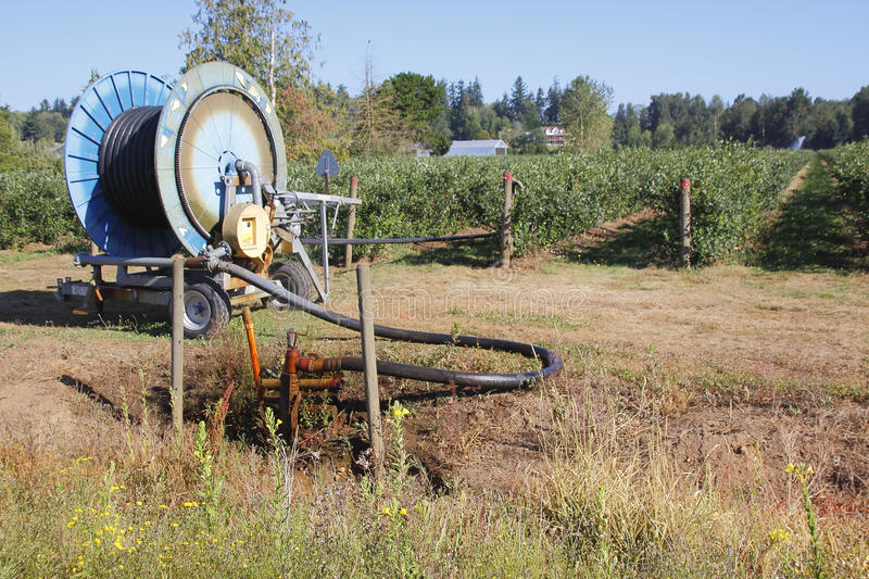Well Water and Irrigating Field. A pumping system taps into well water for irrigating berry crops royalty free stock photo