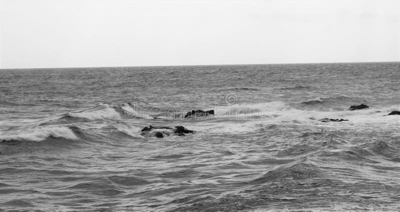 Welle Korsika lizenzfreies stockfoto