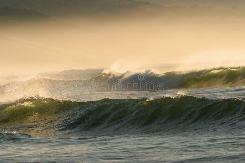 Wellen stockfoto