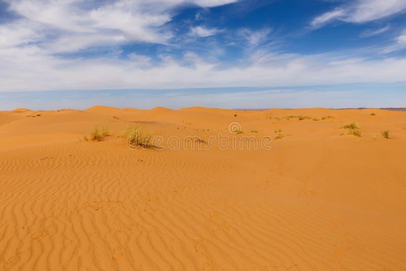 Wellen auf dem Sand in der Sahara-Wüste lizenzfreies stockbild