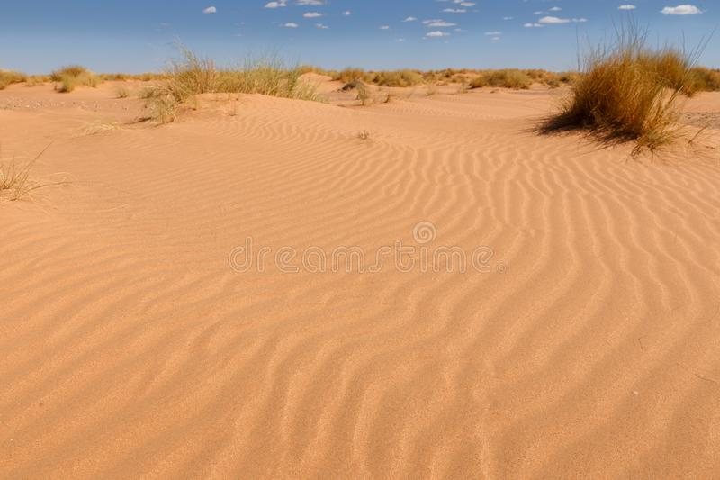 Wellen auf dem Sand in der Sahara-Wüste, Marokko stockfoto