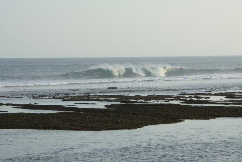 Wellen, die hereinkommen stockfotos