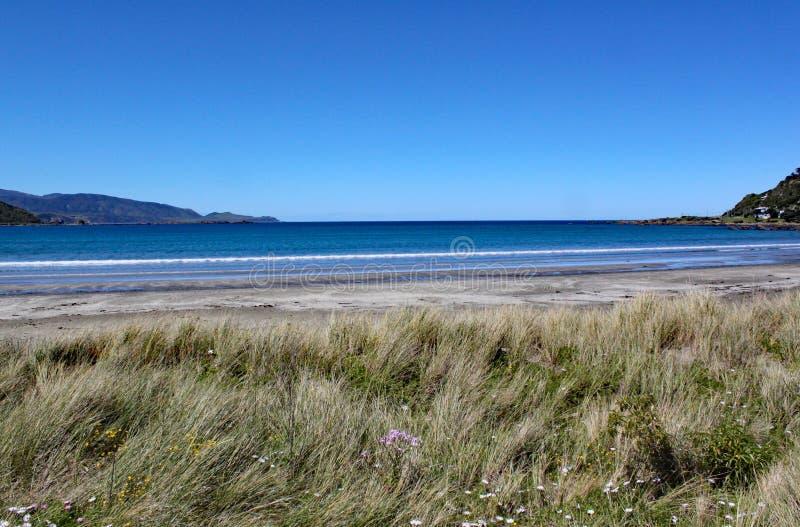 Wellen, die leicht sich an zum Strand an Lyall-Bucht nahe Wellington, Neuseeland waschen stockfotos