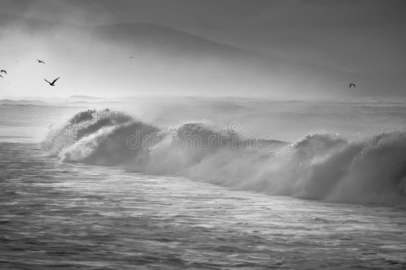 Wellen im Nebel stockbild