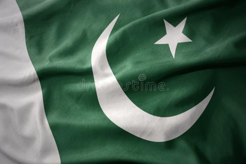 Wellenartig bewegende bunte Flagge von Pakistan lizenzfreie stockfotografie