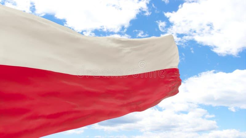 Wellenartig bewegende Flagge von Polen auf blauem bewölktem Himmel lizenzfreies stockbild