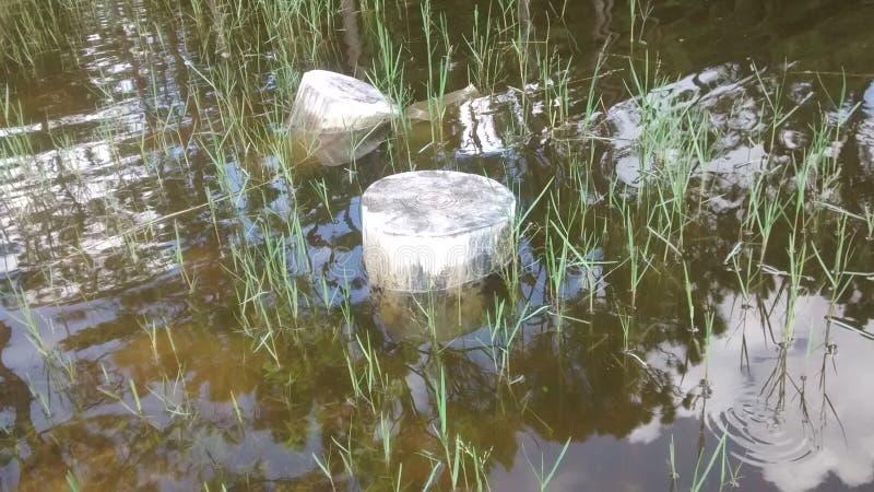 Wellenartig bewegender Teich stockbilder