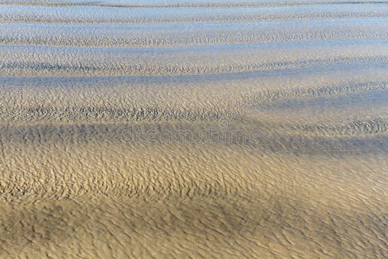 Wellenkräuselungen über goldenem Hintergrund des sandigen Strandes lizenzfreie stockfotografie