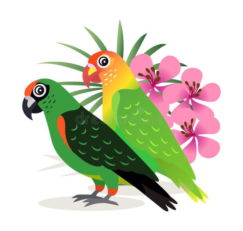 Wellensittich mit zwei schöner bunter Papageien mit den rosa Blumen lokalisiert auf weißem Hintergrund, exotische Vögel, Vektor lizenzfreie abbildung