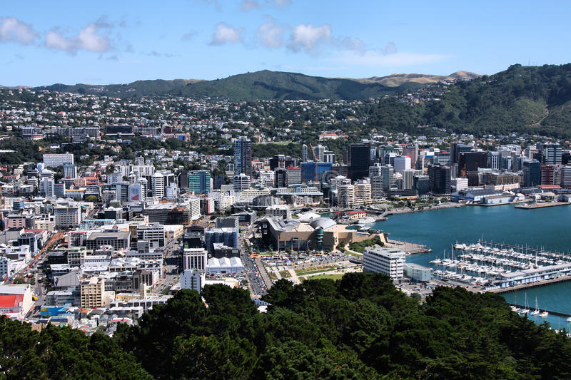 Wellington immagine stock libera da diritti