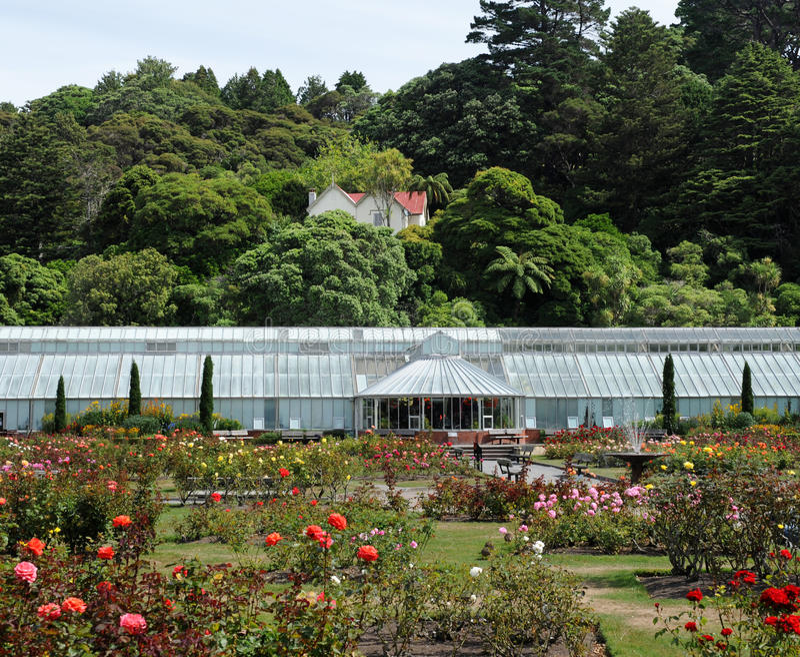 Download Wellington Botanic Garden stock image. Image of greenhouse - 19272651