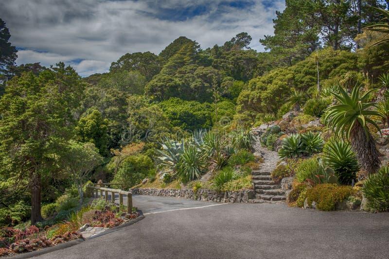 Wellington Botanic Garden, Nieuw Zeeland stock foto