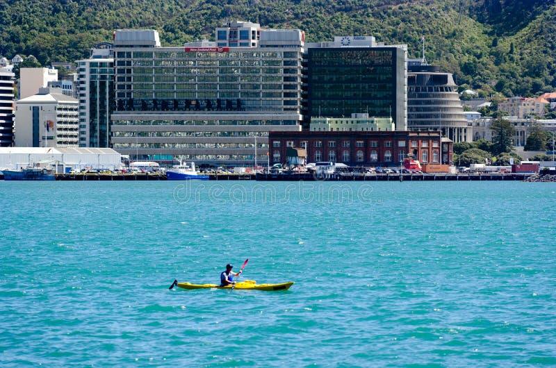 Download Arquitectura Da Cidade De Wellington Foto de Stock Editorial - Imagem de seafront, norte: 29848263